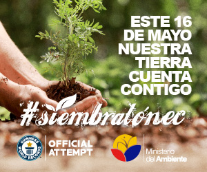 Ecuador expects to set a Guinness Record for mass and simultaneous reforestation